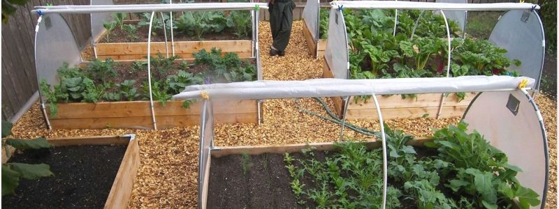 Raised Vegetable Garden Beds Unique Raised Vegetable Garden Beds