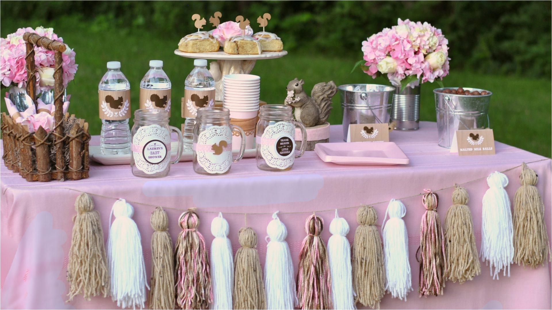Baby Shower Decorations For Girl Diy Elegant Girl Baby Shower