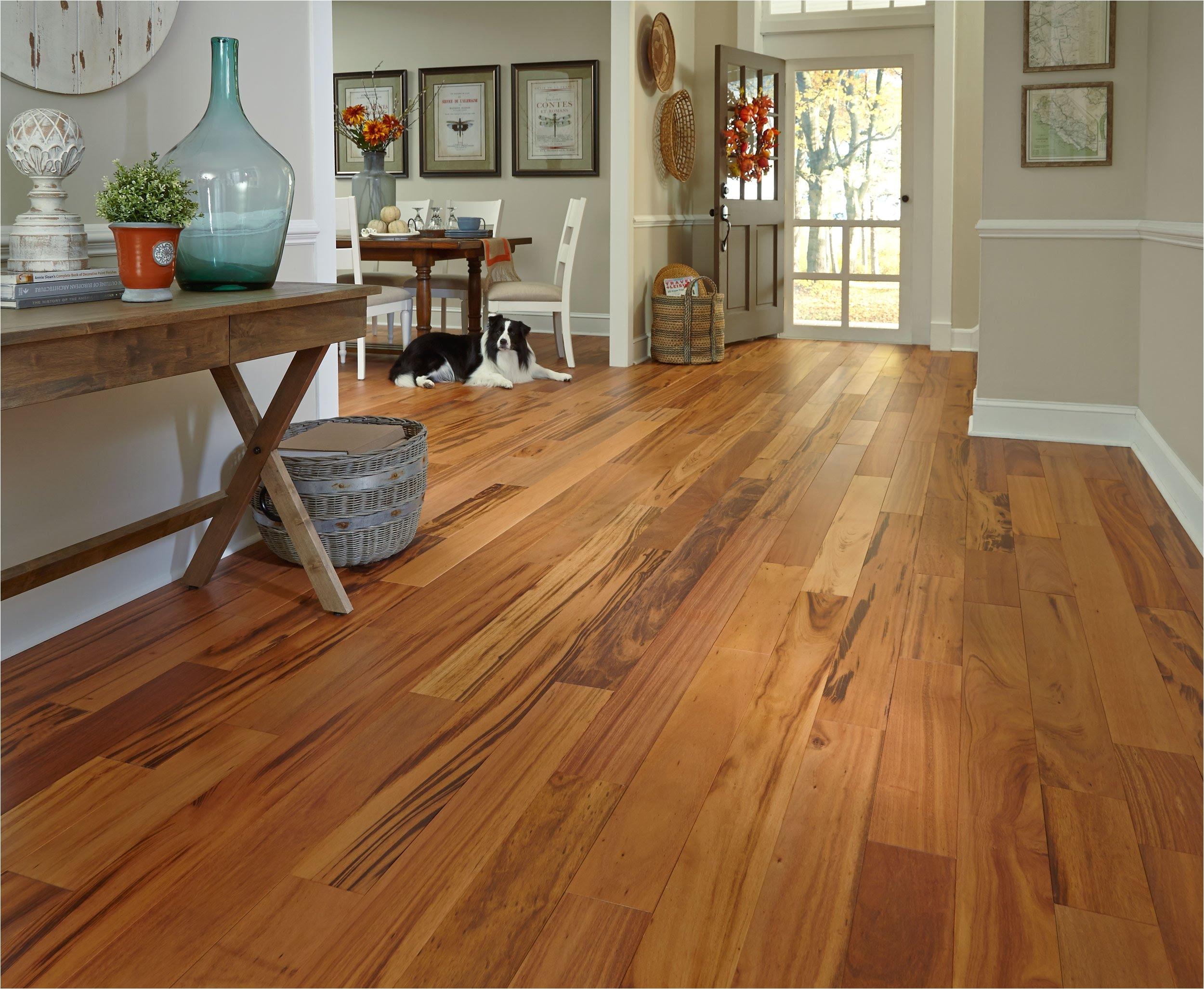 glamorous hardwood floor stores near me 0 maxresdefault cabinet fabulous hardwood floor