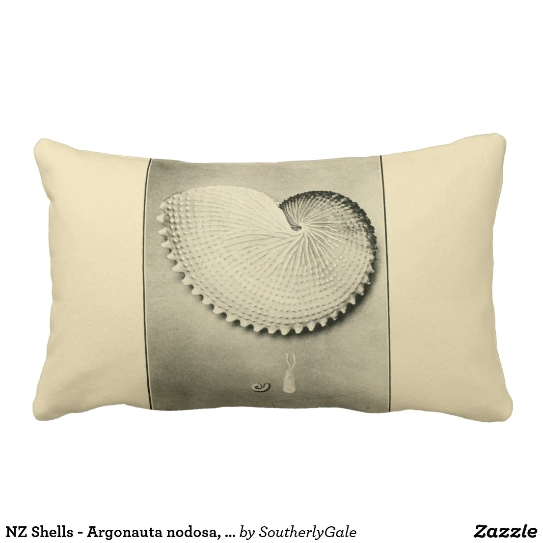 Best Place to Buy Decorative Bed Pillows Nz Shells Argonauta Nodosa Dolium Variegatum Lumbar Pillow A