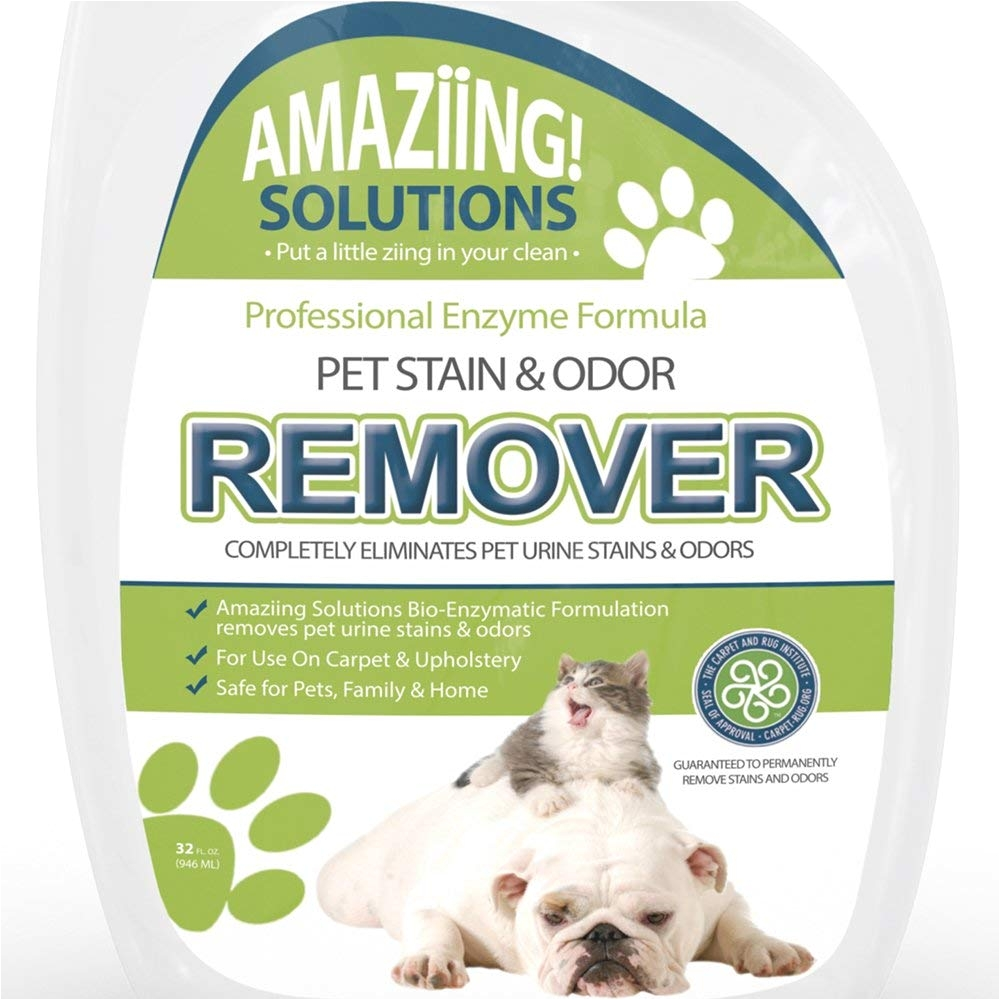amazon com amaziing solutions pet odor eliminator and stain remover carpet cleaner for dog urine and cat pee professional strength enzymatic solution