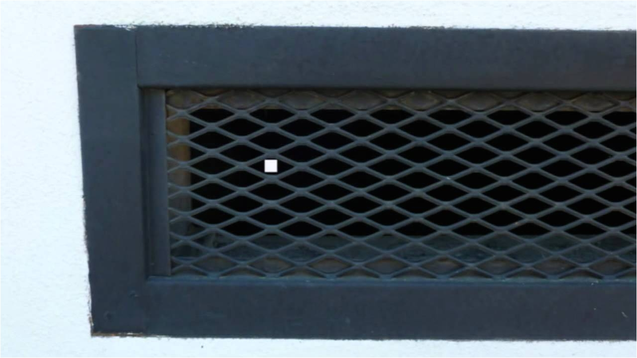 large gaps in foundation vent screens pest control and bees