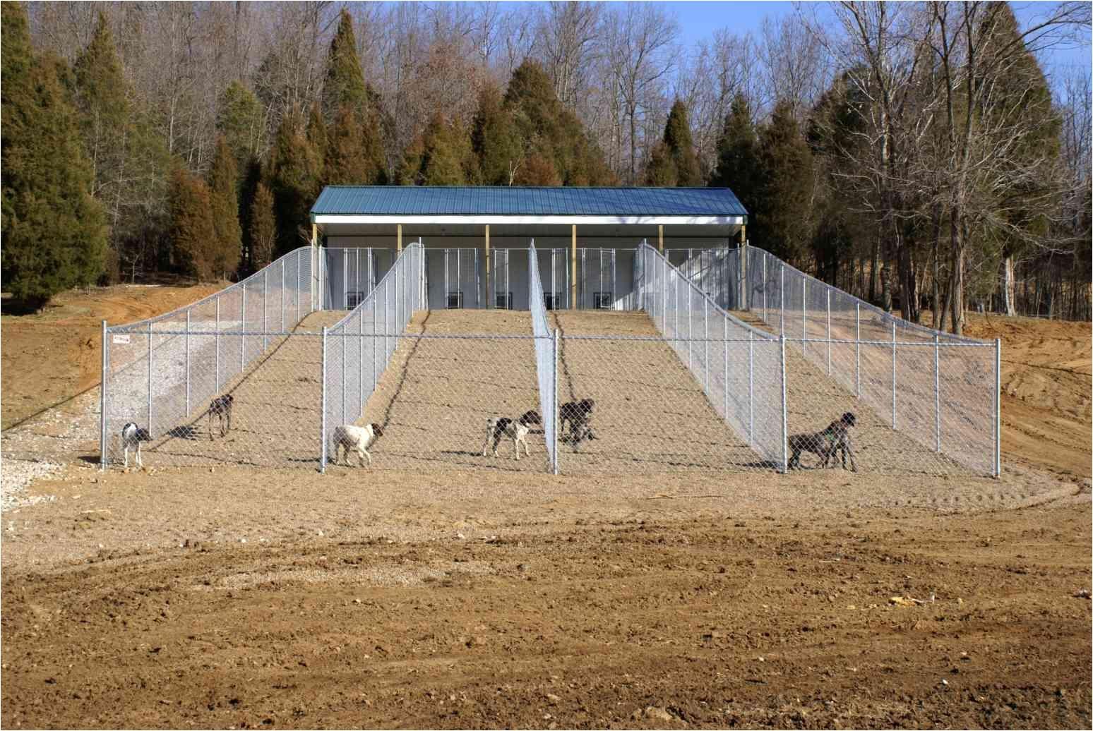 build a dog kennel fresh dog kennel floor plans beautiful dog kennel floor plans floor ideas