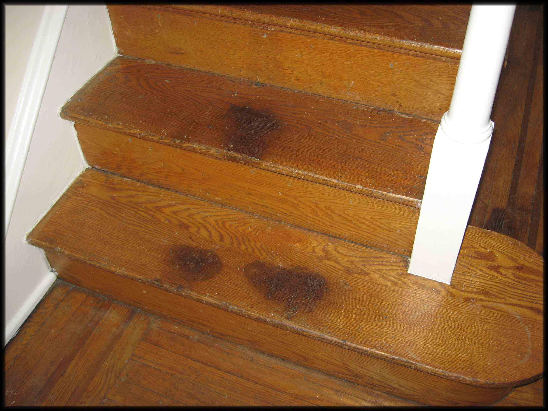 sandless wood floor re coating
