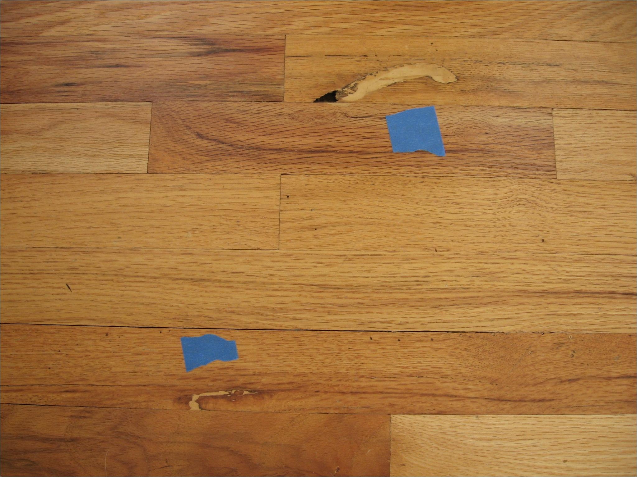 Epoxy Wood Floor Crack Filler Wood Floor Techniques 101