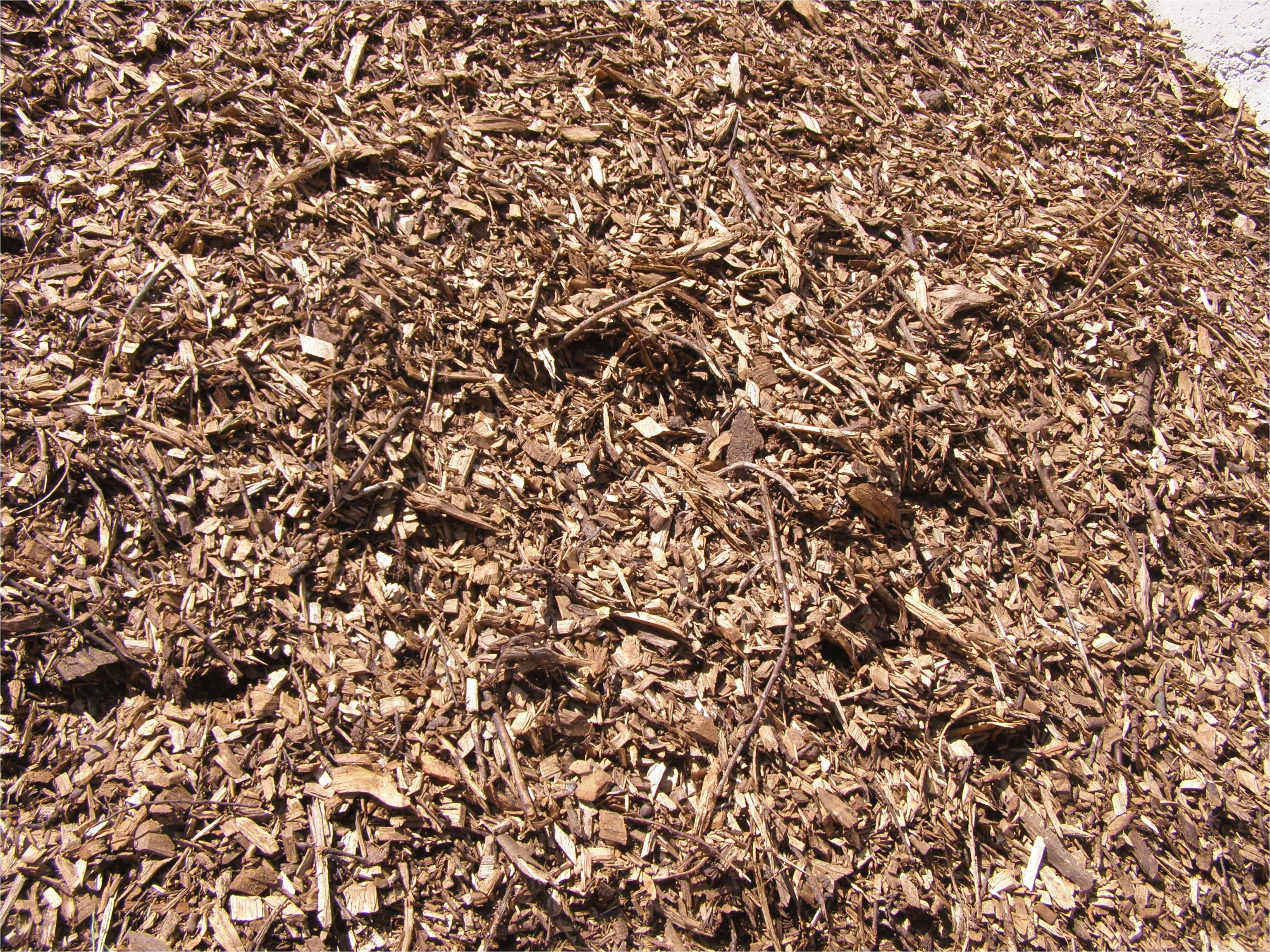 Forest Floor Mulch Nz Arborist Chip Wairarapa Landscaping Garden Supplies