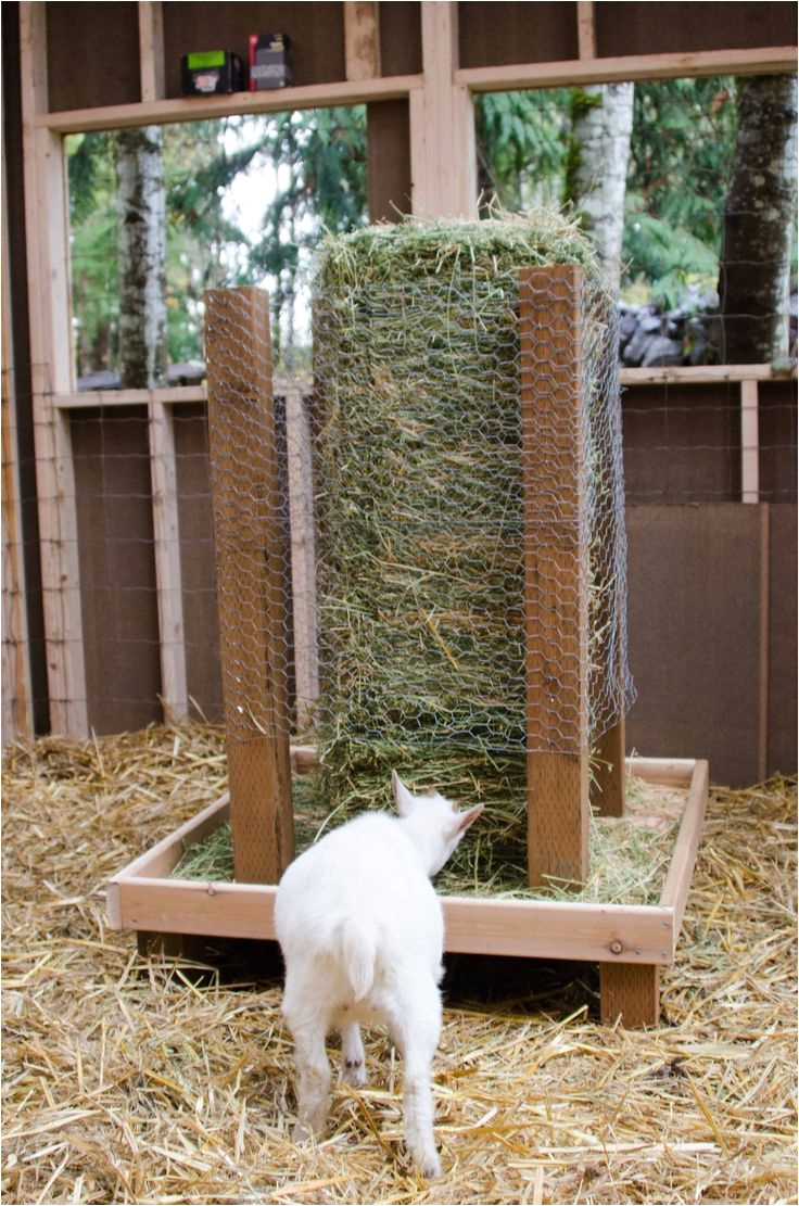 Free Standing Goat Hay Rack 1397 Best Goats Images On Pinterest Raising Goats Goat Farming
