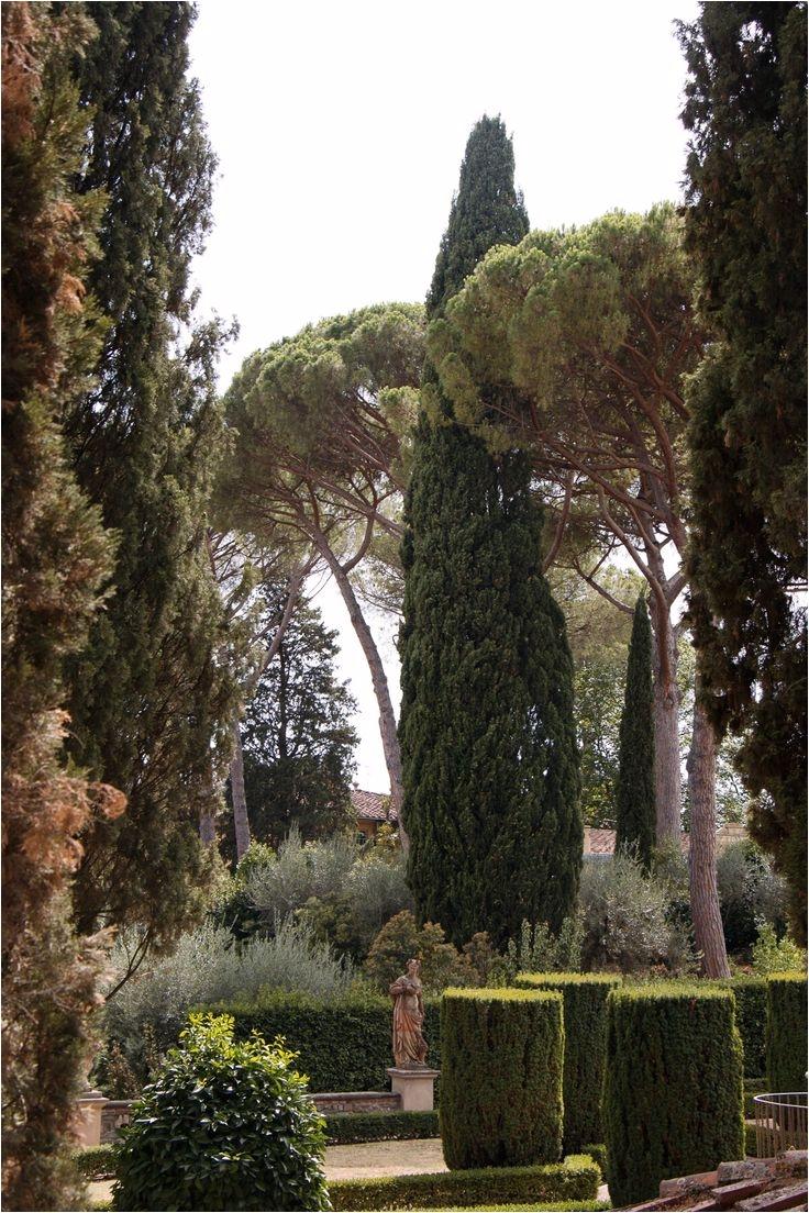 an insider tour of a spectacular garden in florence
