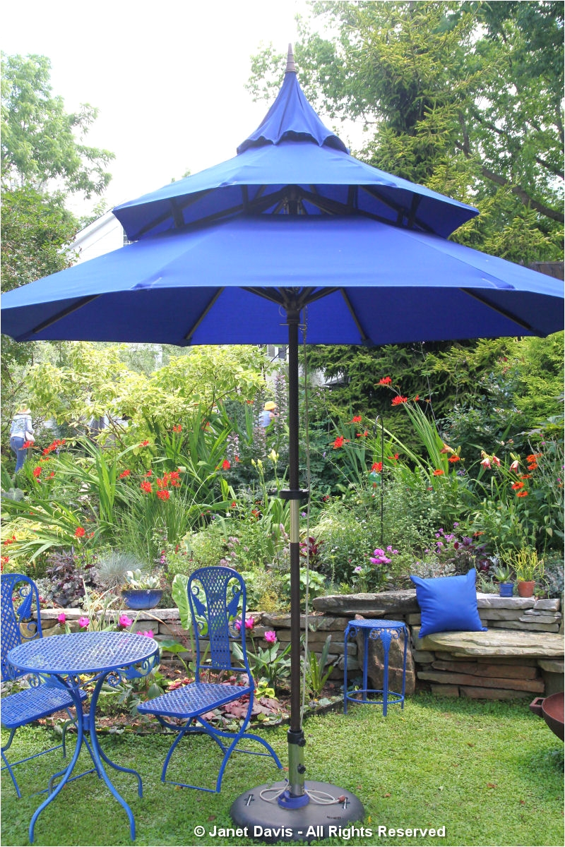 blue umbrella and furniture linda hostetler art