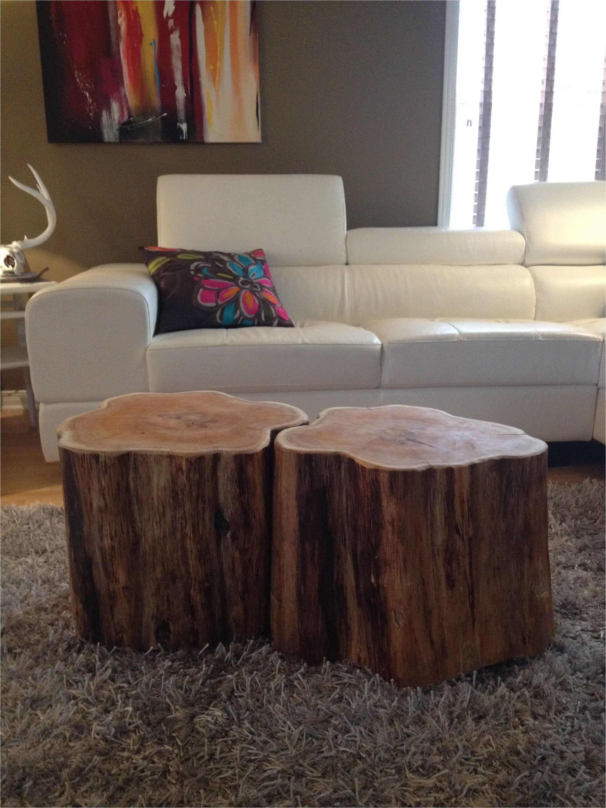stump coffee tables serenitystumps com tree trunk tables stump coffee table like ellen ottawa ontario canada sump coffee table like ellen show tree trunk