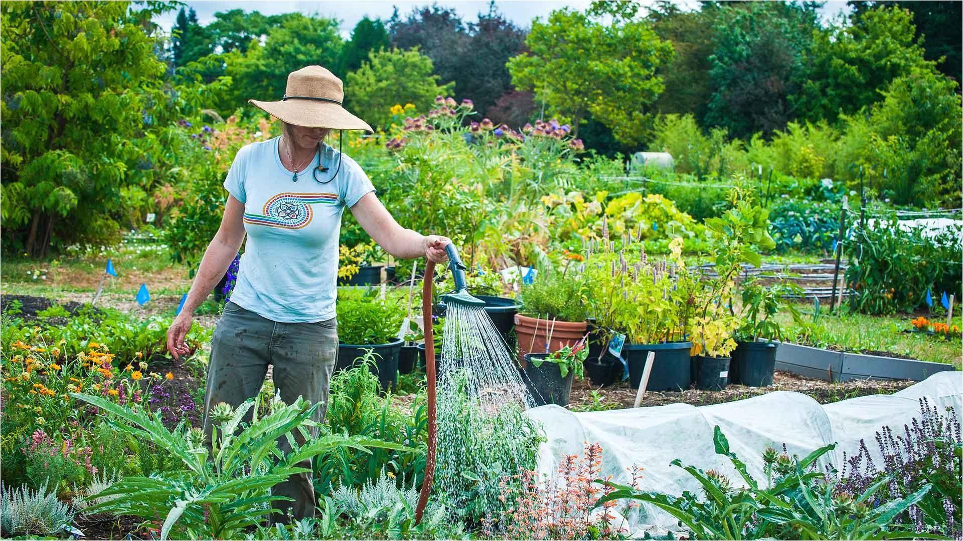 Master Gardener Program Online Master Gardener Online Professional and Continuing Education
