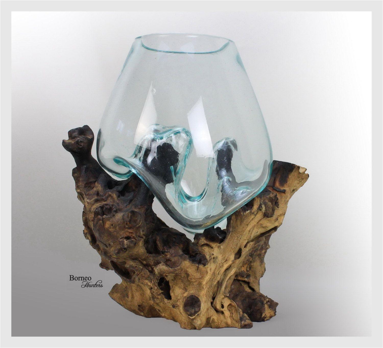 hand blown molten glass on driftwood base sculpted terrarium vase fish bowl indoor planter eco tillandsia aerium unique wood root 12 25x11 by