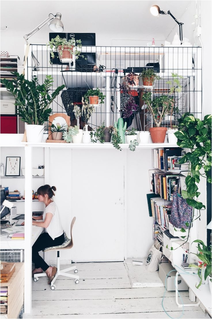 the studio plants all over