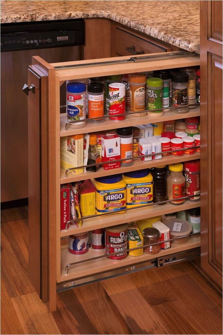 diy pull out spice rack plans http www bedbugle com 1449 diy pull out spice rack plans racks pull out spice rack offers easy accessibility