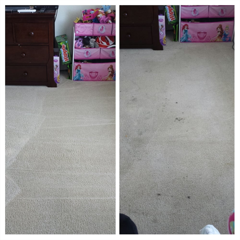 ccs carpet cleaning carpet cleaning 4583 3rd st pleasanton ca phone number yelp