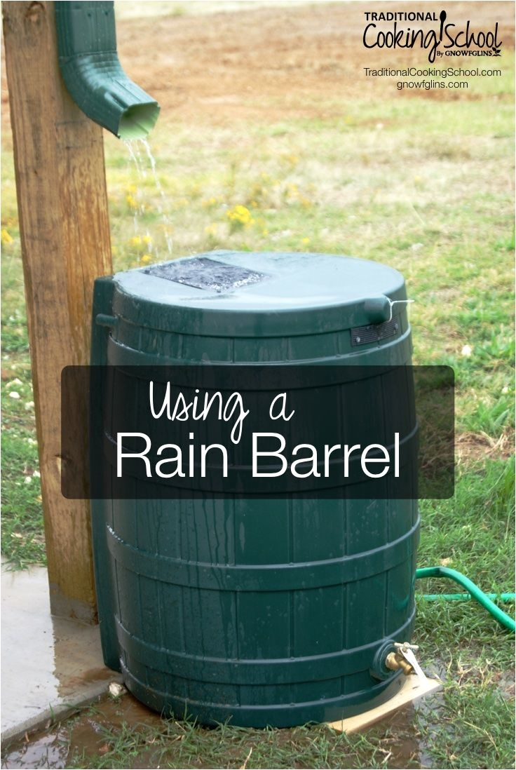 using a rain barrel rain barrels help you take that extra step toward self sufficiency and sustainability plus they reduce your water bill
