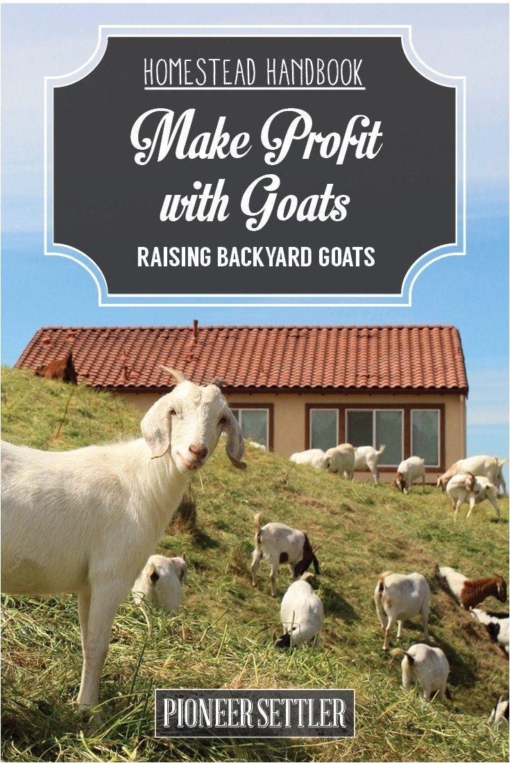 hh raising backyard goats chapter9