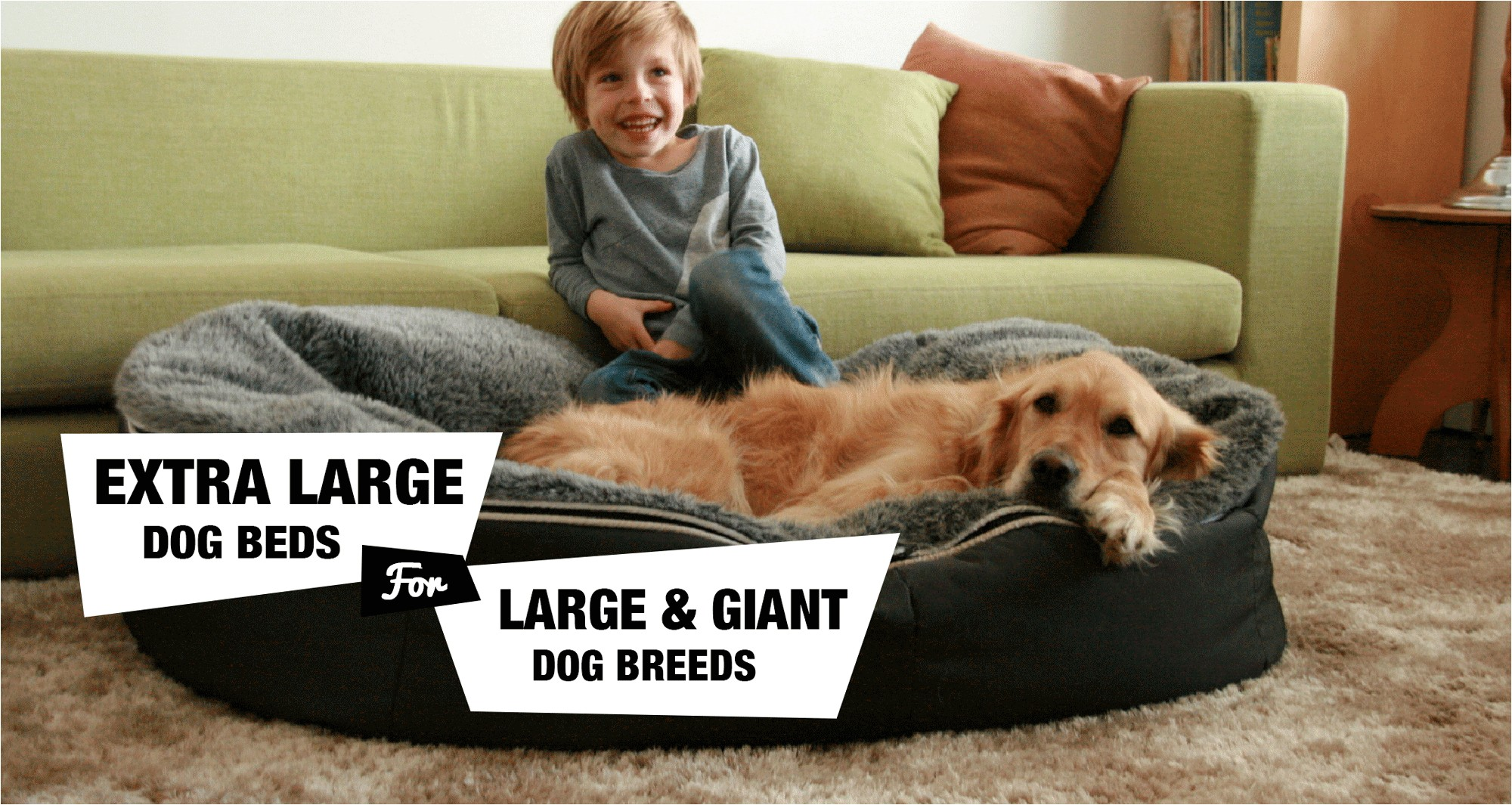 extra large dog beds best reviews png