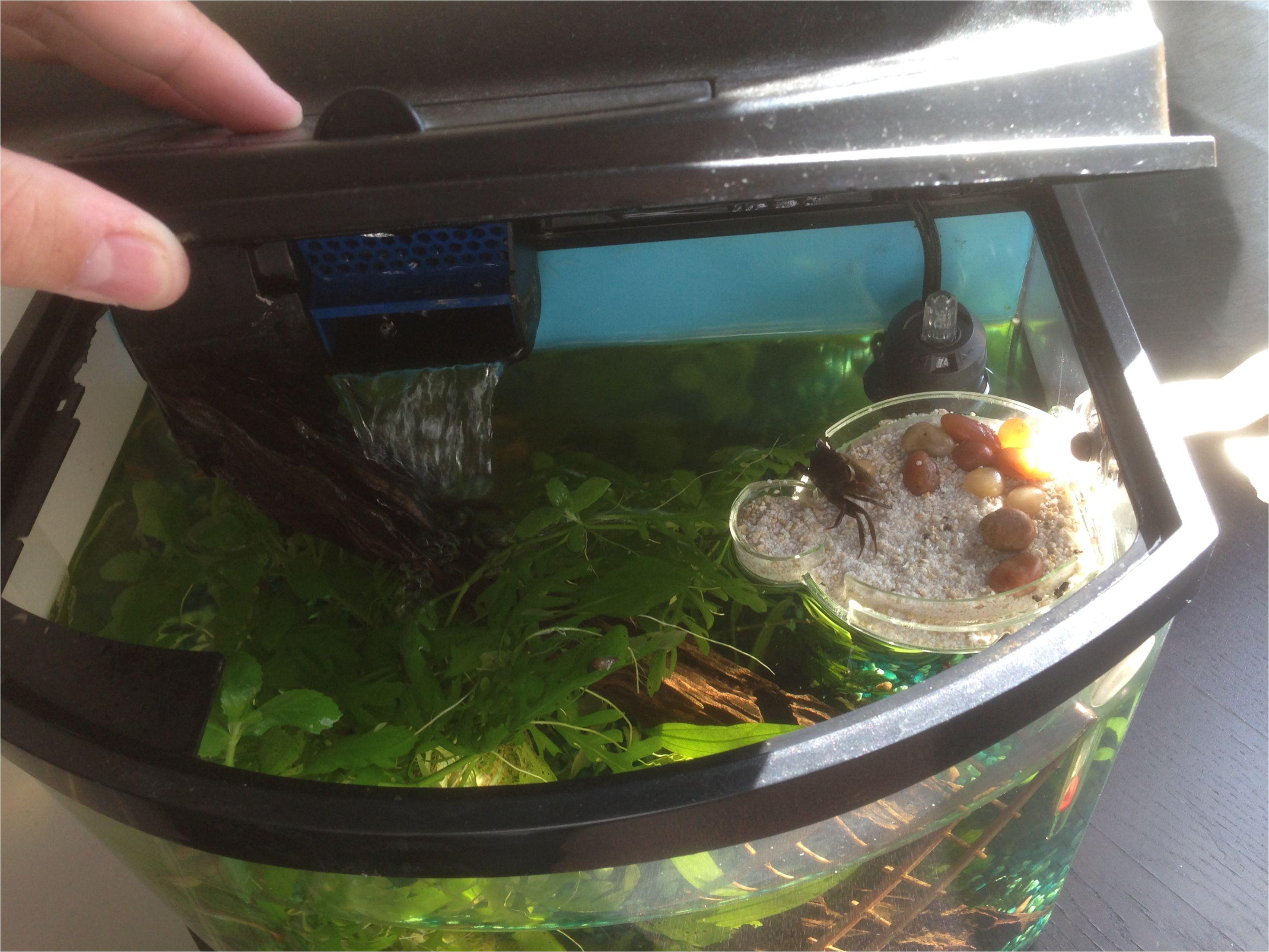 Star Wars Fish Tank Decorations Homemade Island For