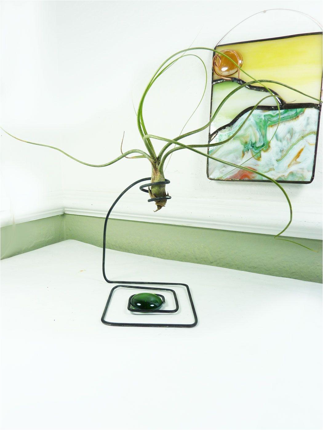 wire air plant holder high drama