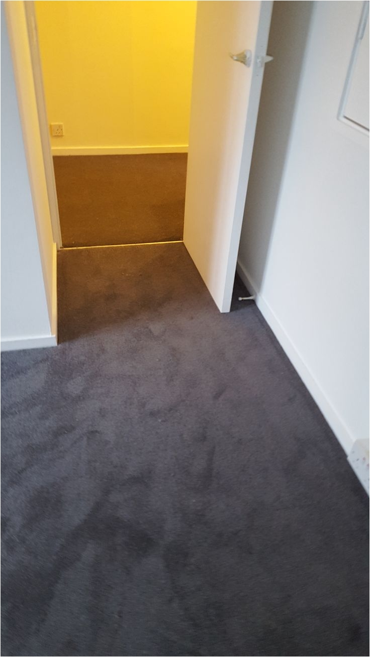 East Windsor Flooring Company 47 Best Carpet and Striped by Criterion Flooring Images On Pinterest