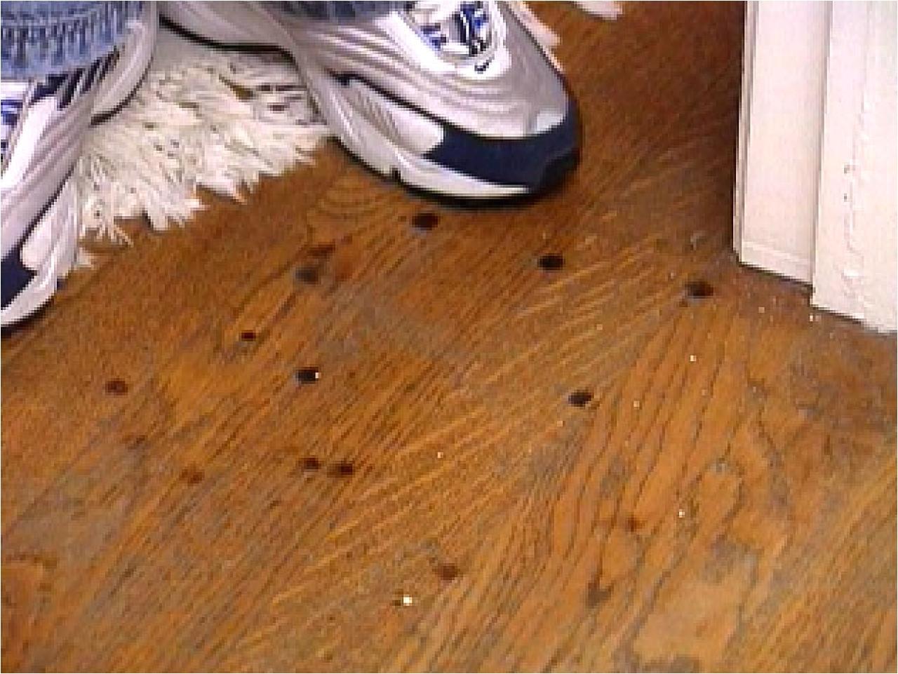 Removing Sticky Glue From Hardwood Floors How to Remove Burn Marks On A Hardwood Floor Hgtv