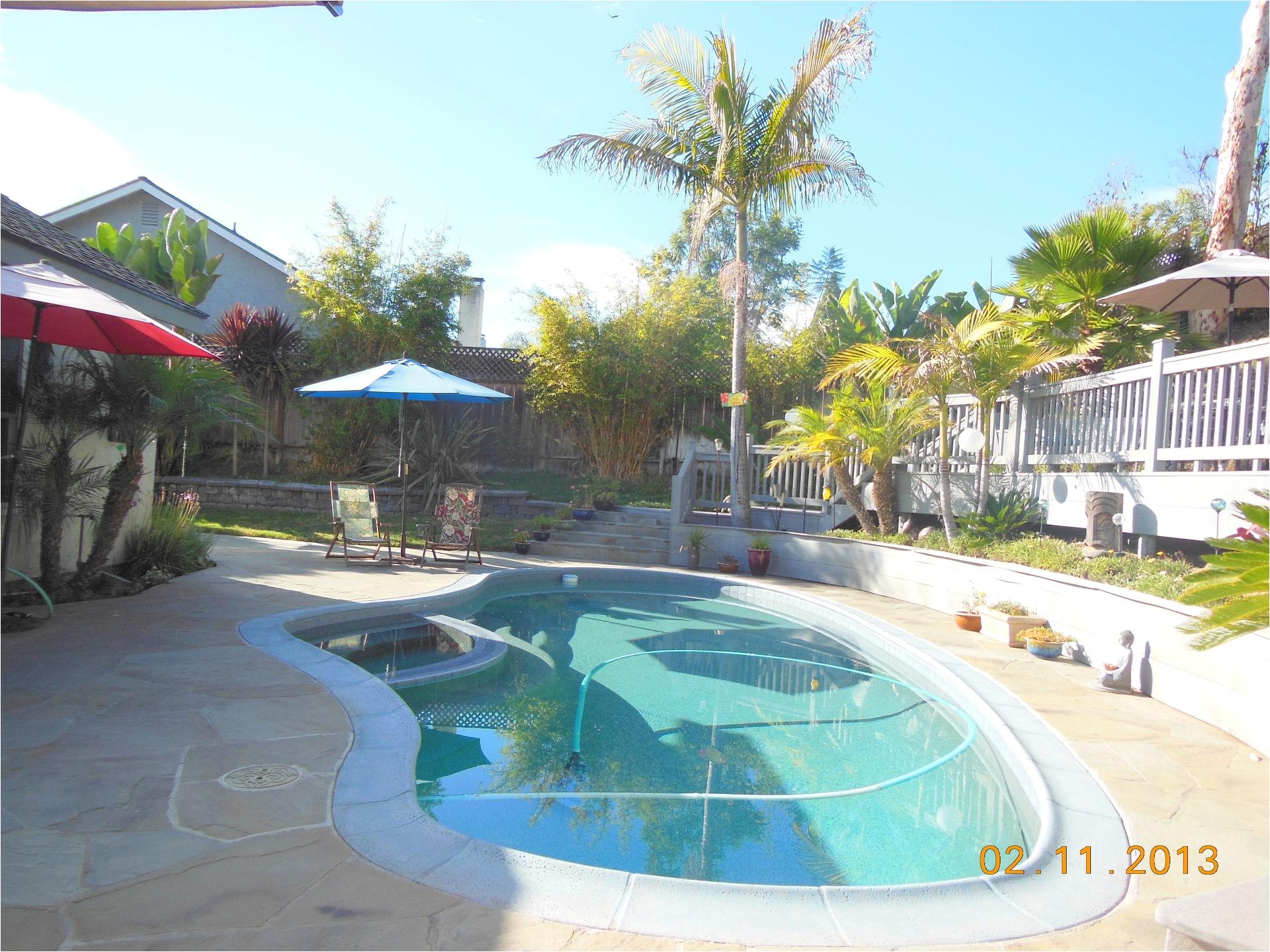Swimming Pool Floor Padding Tropical Backyard Paradise Bring The Pets Deck Spa Garden