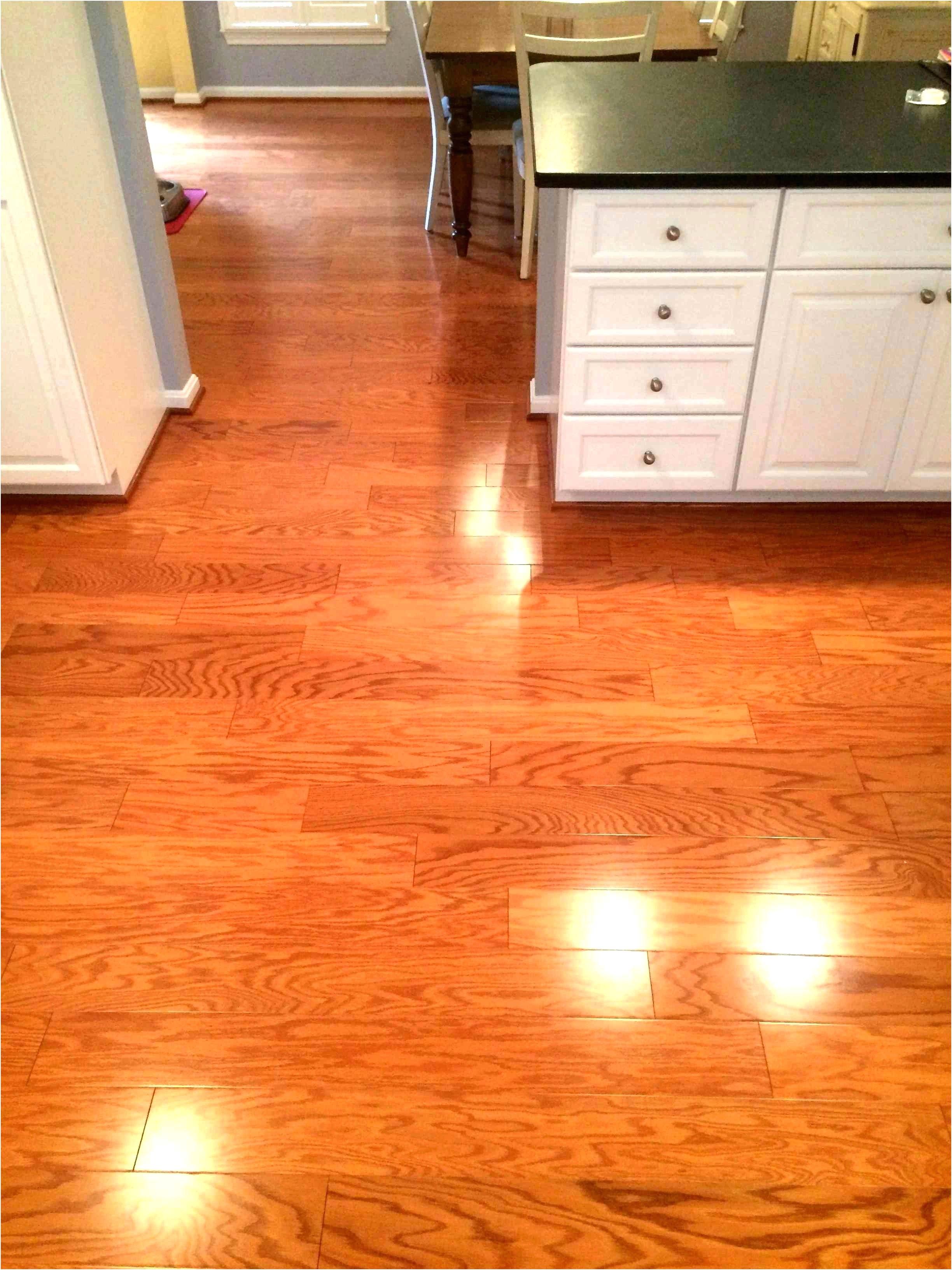 The Best Vacuum Cleaner for Wood Floors and Carpets Non Slip Hardwood Floor Podemosleganes
