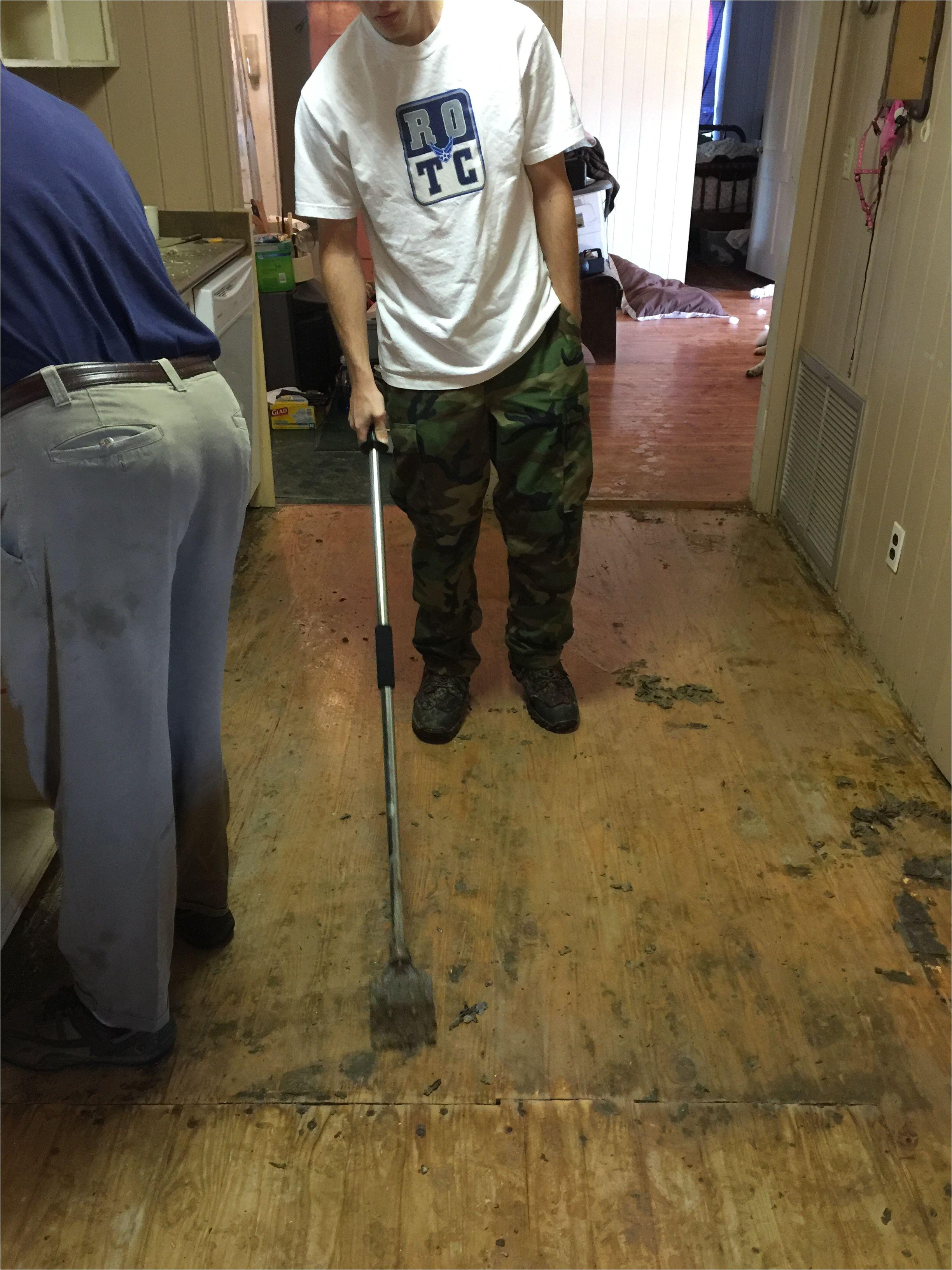 Wood Floor Scraper Scraping the Floor after Pulling Up Linoleum sorry It S Sideways