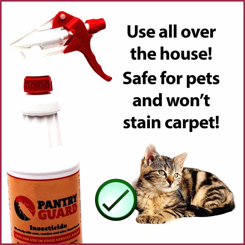 diy spray to keep cats off furniture unique amazon yakindo pro grade food safe kitchen bug