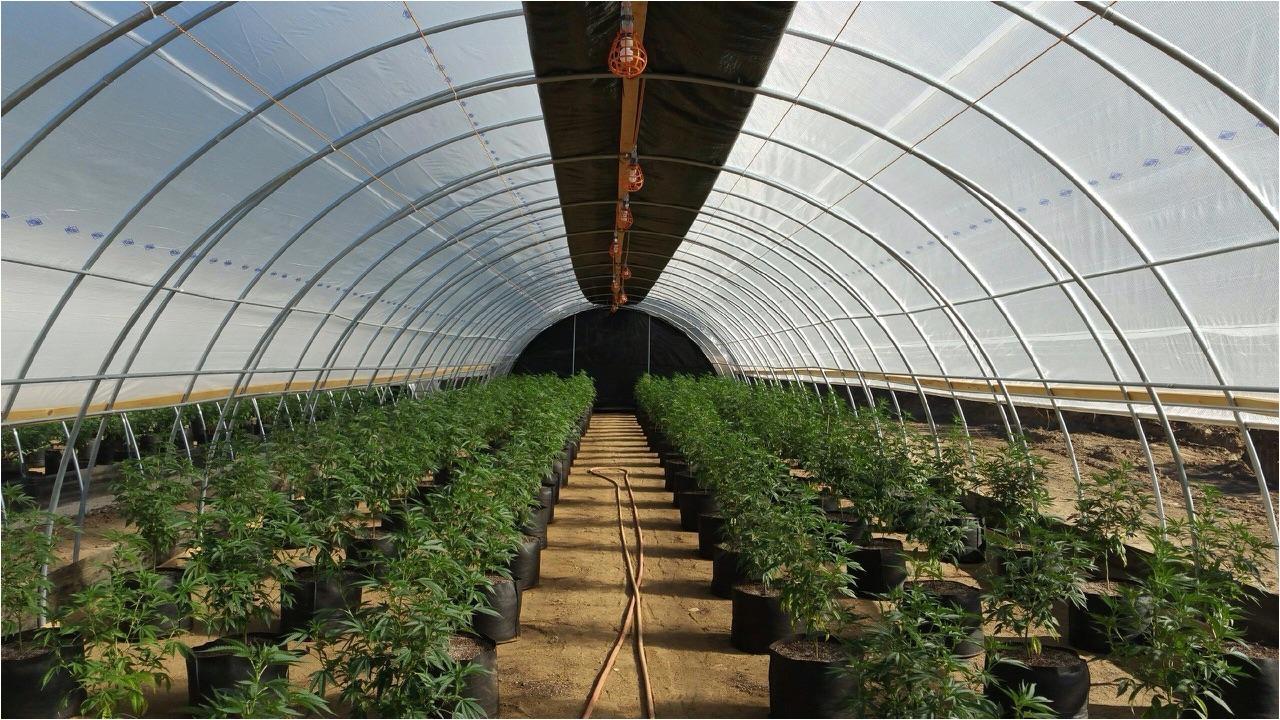dep in humboldt county auto light depo greenhouse