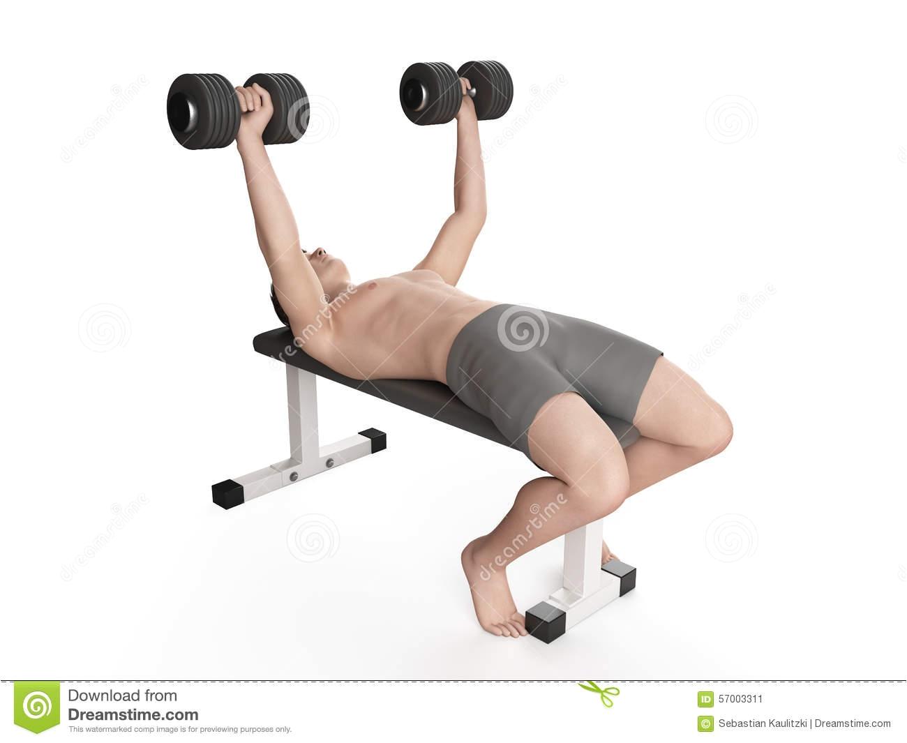 exercise illustration workout bench press