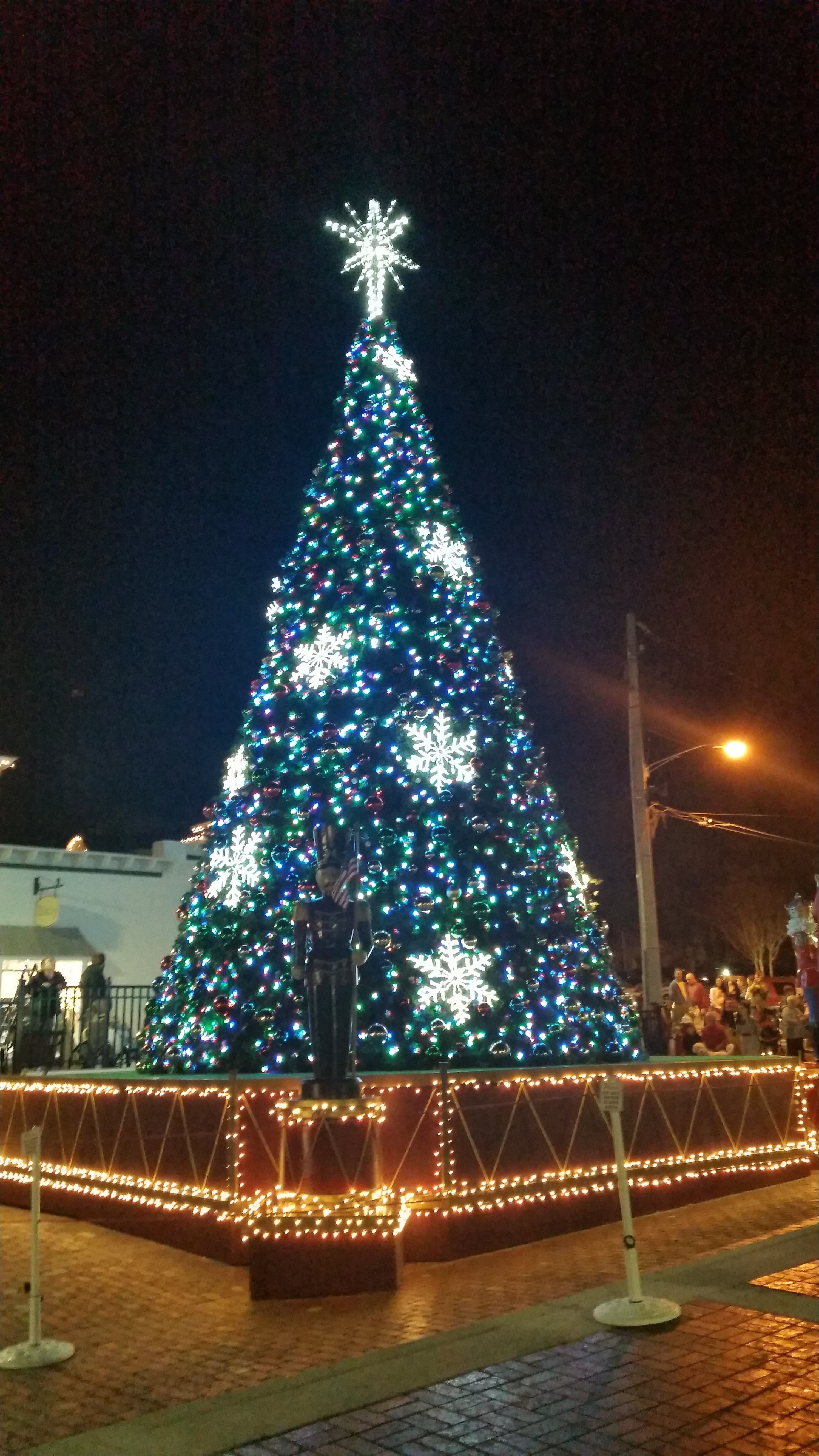 mount doras tree located in the heart of the new pedestrian plaza the lights were