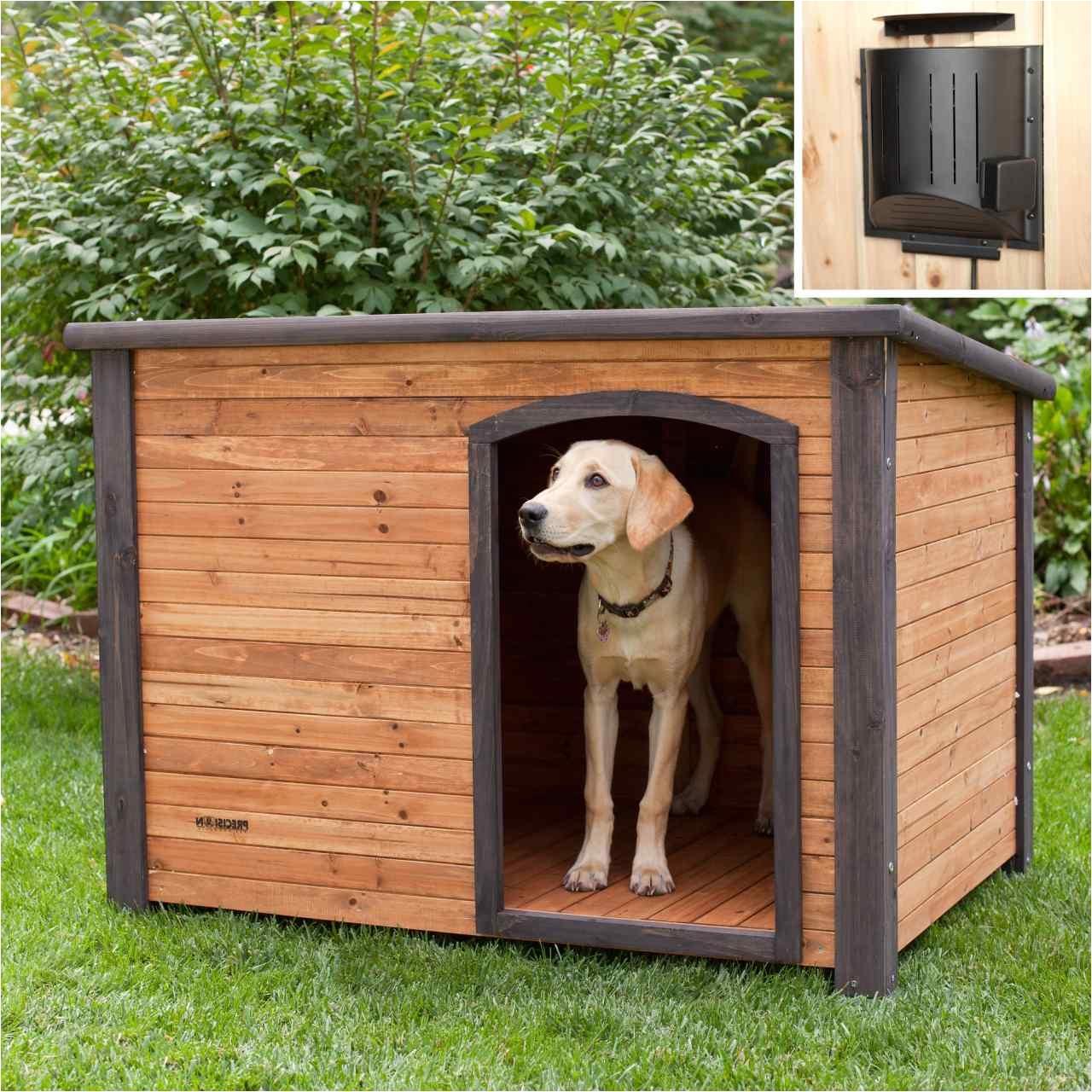 free double dog house plans beautiful homemade dog house ideas dog