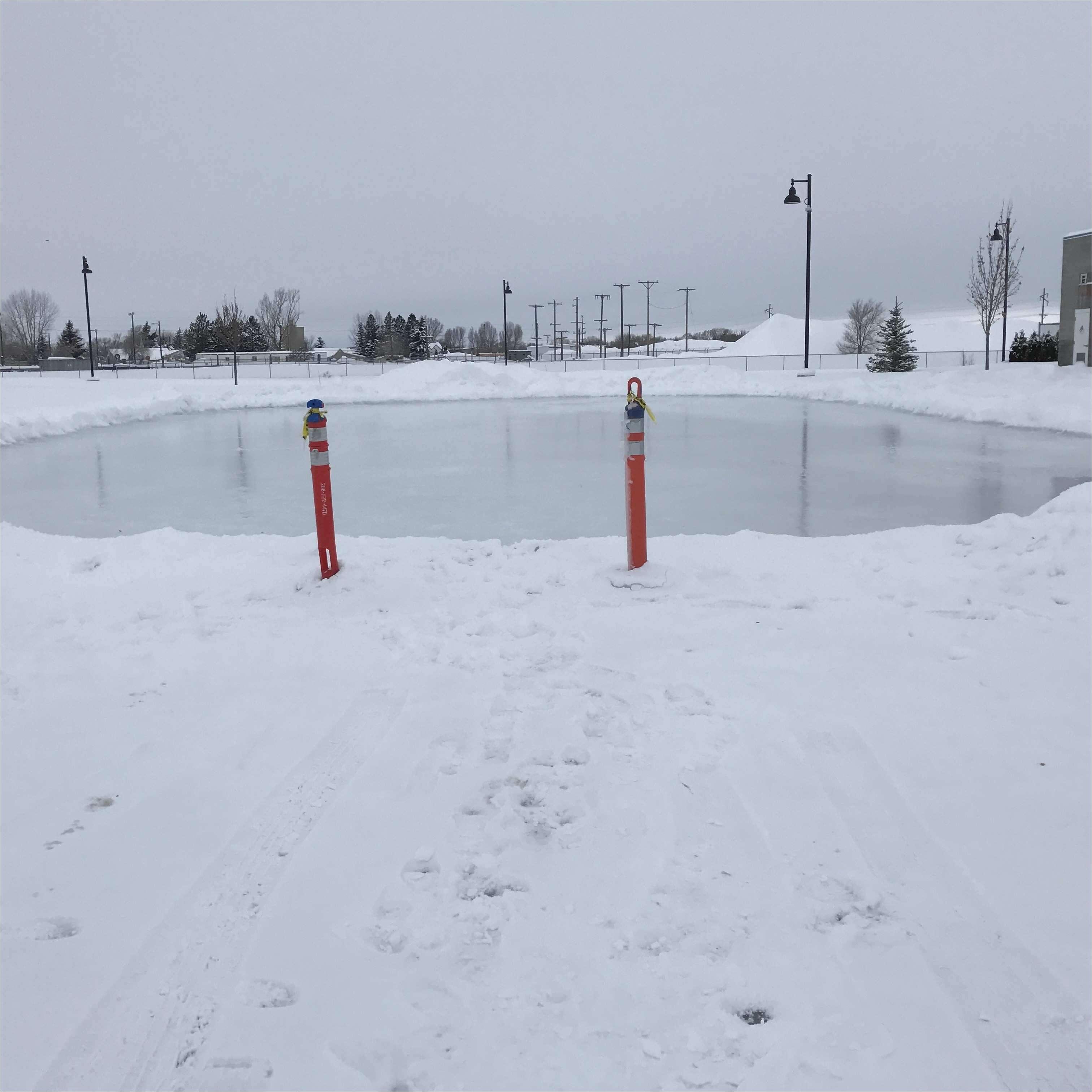 backyard hockey rink lighting new how to build a backyard rink magnificent 41 beautiful diy backyard