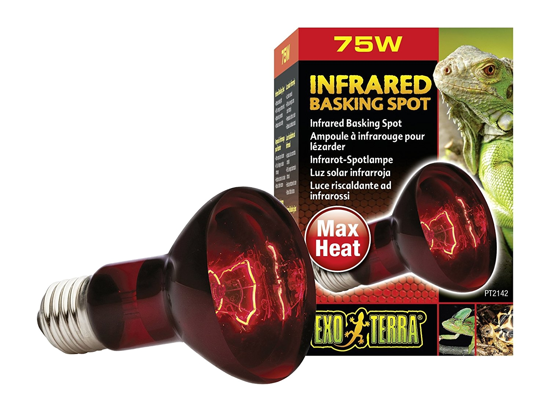 amazon com exo terra heat glo infrared spot lamp 75 watt 120 volt pet habitat heat lamps pet supplies