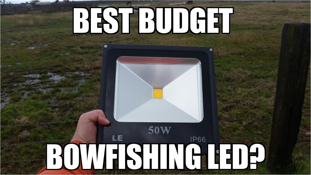 budget bowfishing led light le warm white led