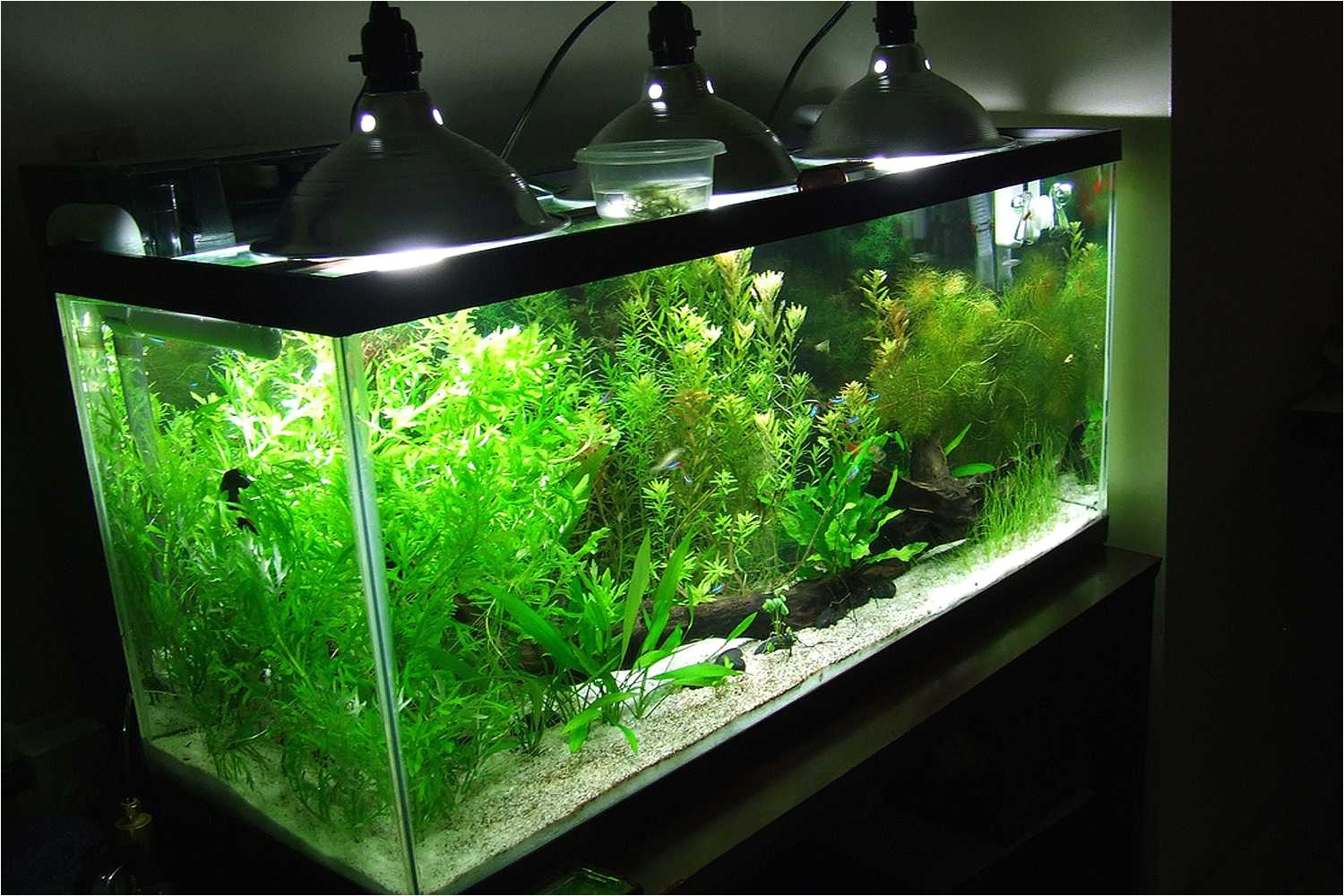 what not to do with led and aquariums