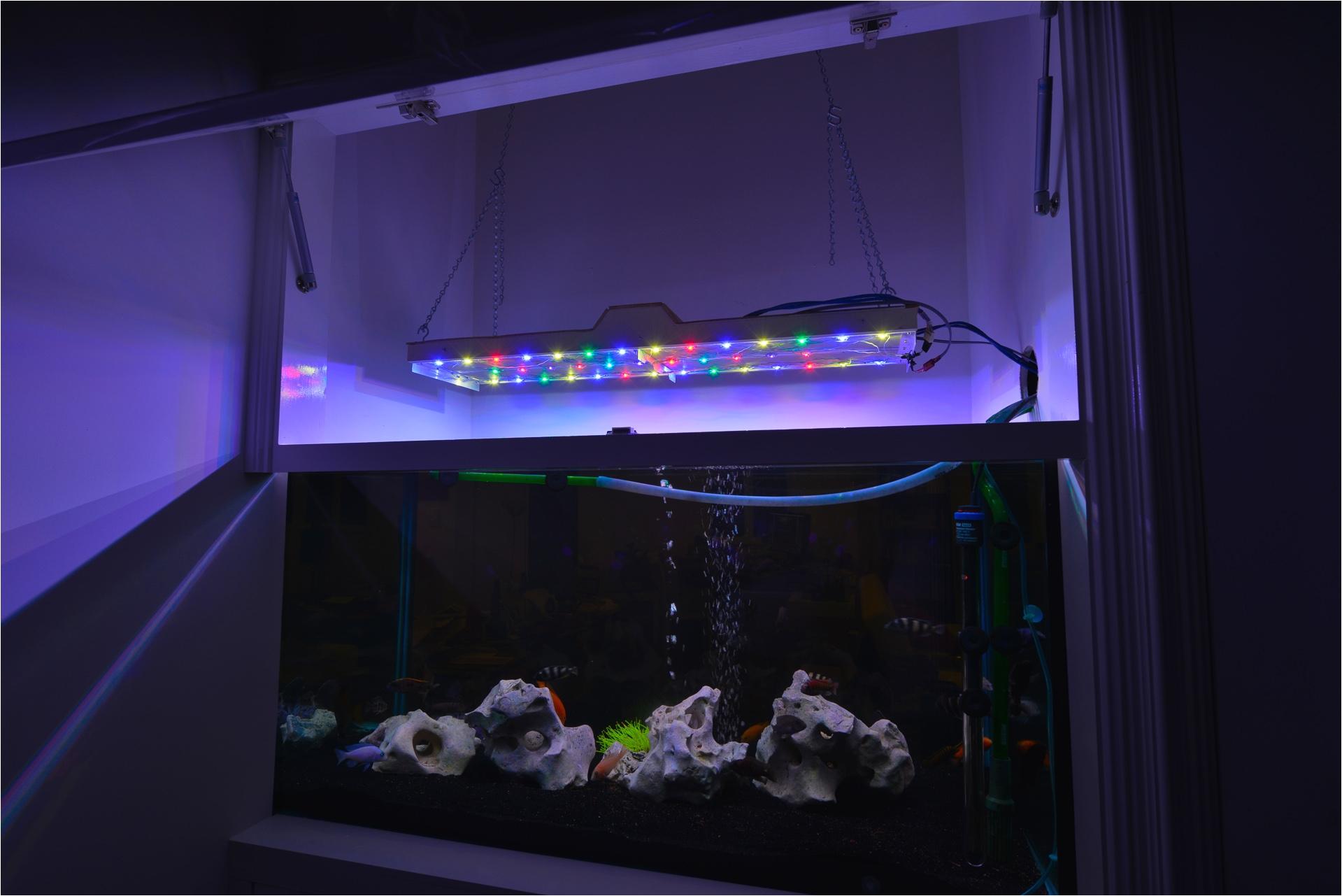 final fish light led fish tank