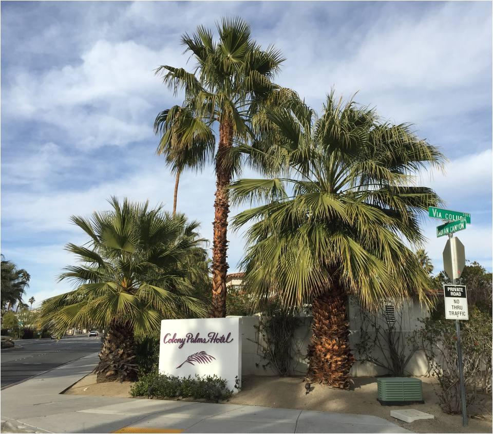 colony palms hotel entrance