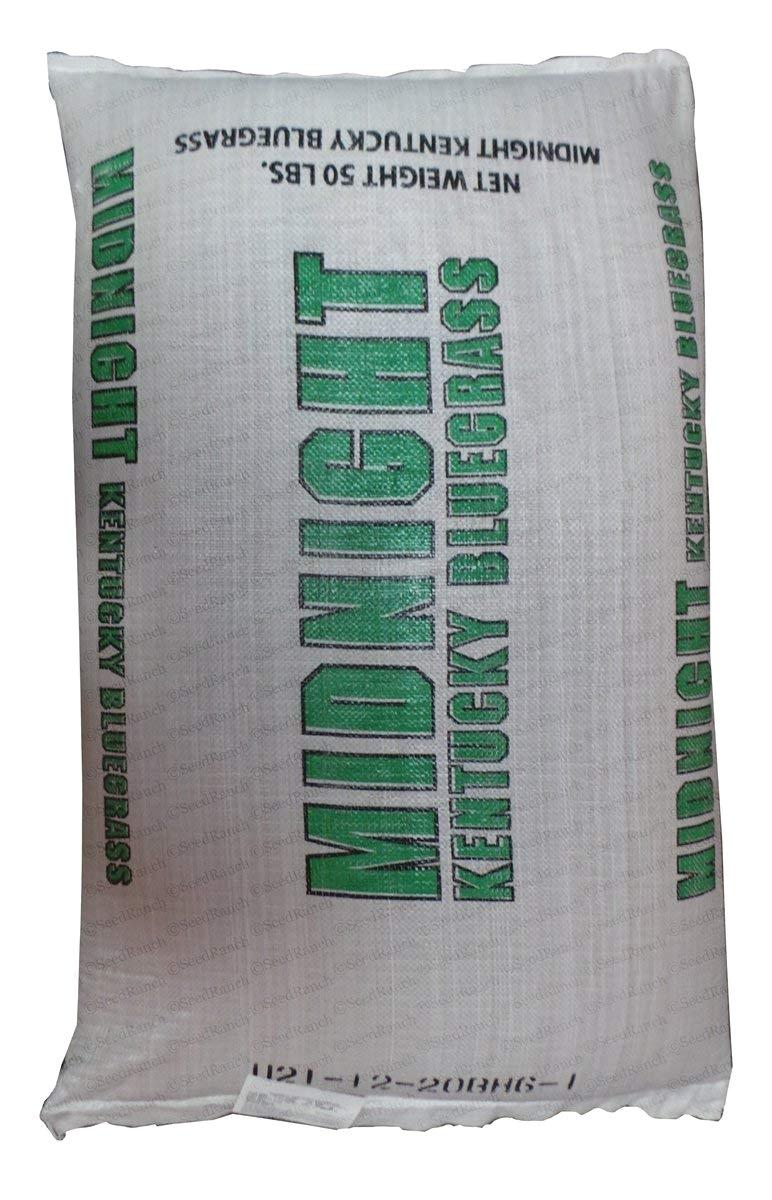 amazon com seedranch midnight kentucky bluegrass seed certified 5 lbs grass plants garden outdoor