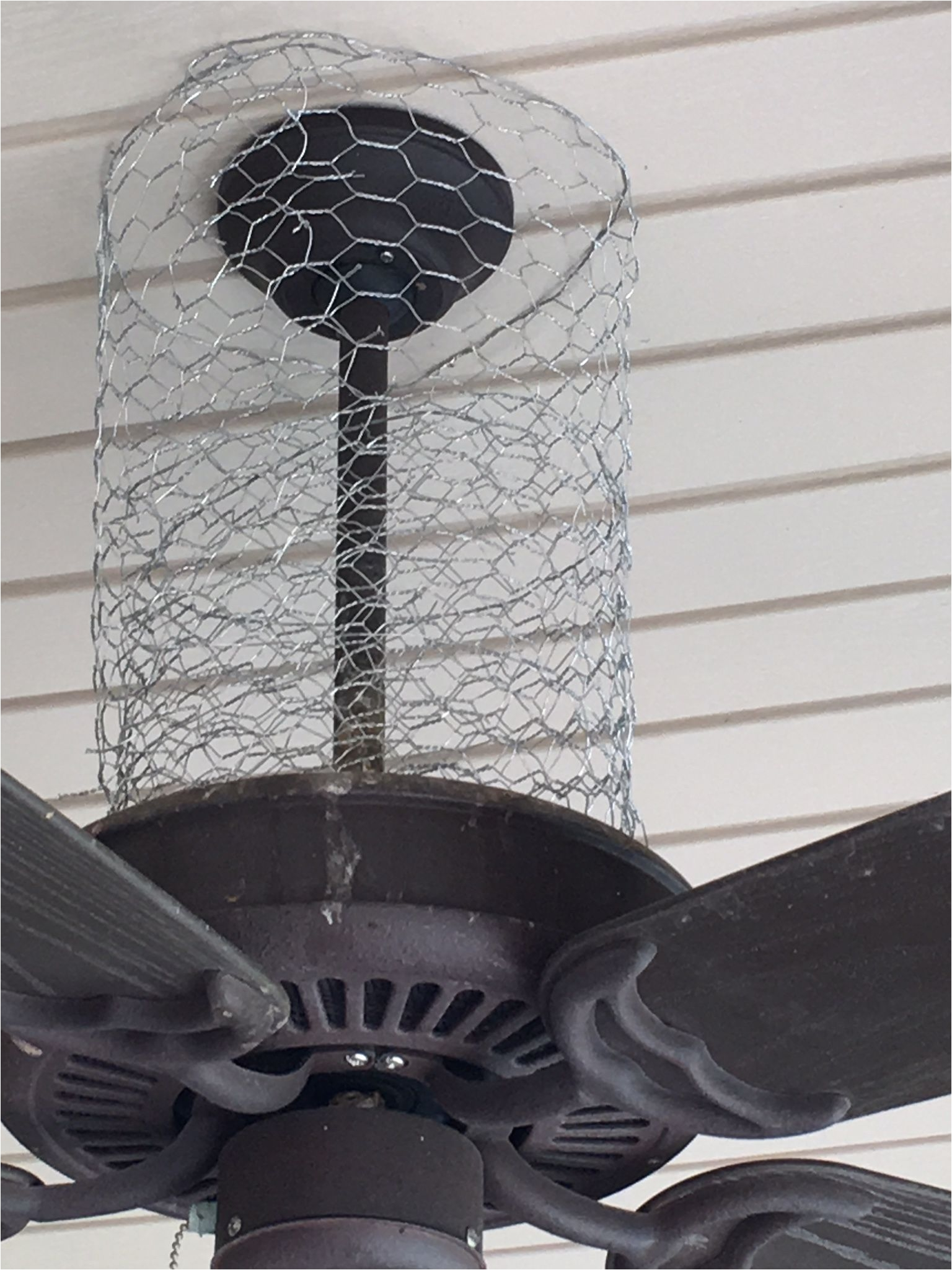 how i keep birds off of my porch chicken wire is a versatile solution to