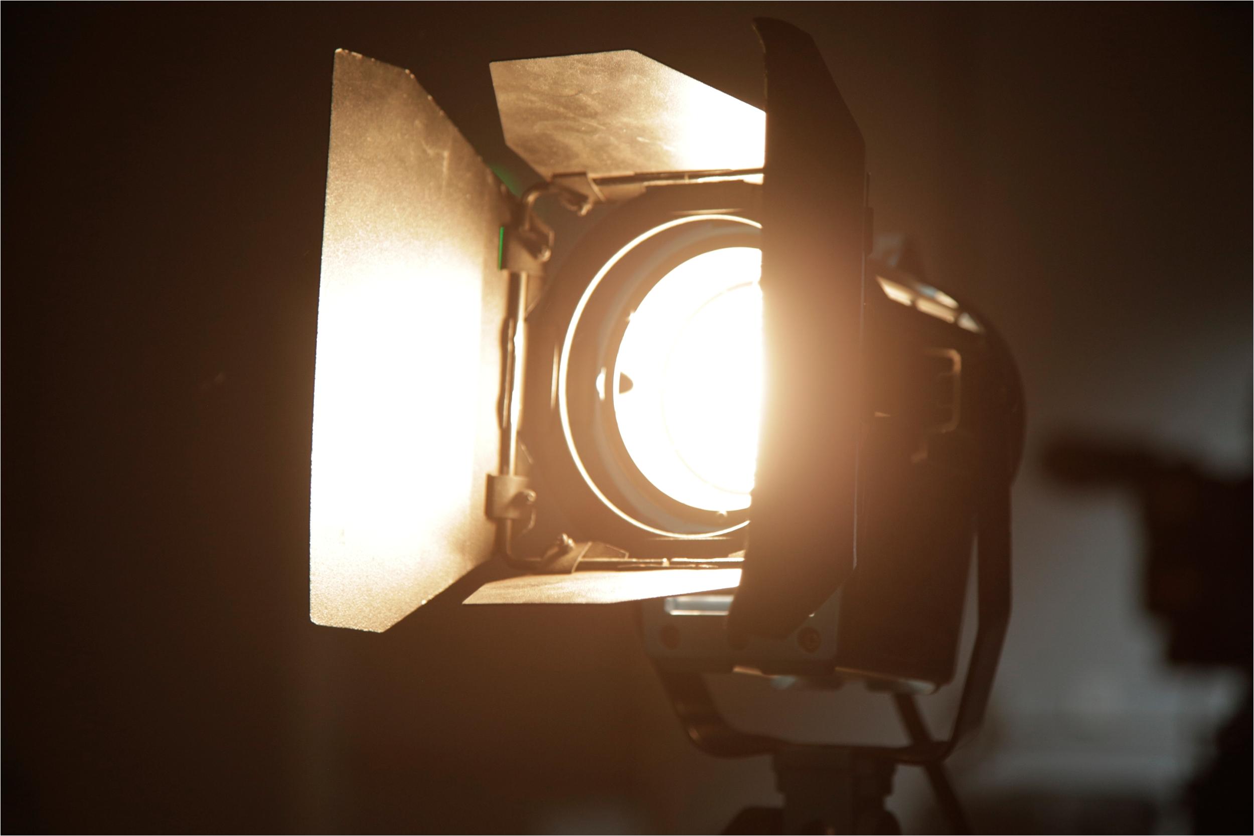 fresnel light with barn doors