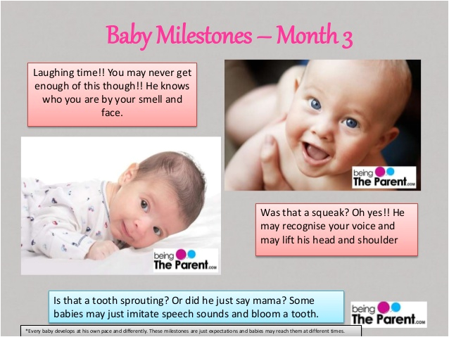 baby milestones 1 to 6 months
