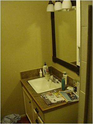 4 5 ft x 9 ft bathroom remodel help