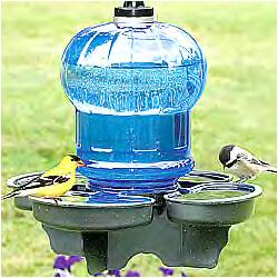 waterer bird bath