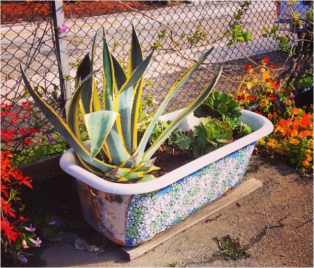clawfoot tub garden em43a