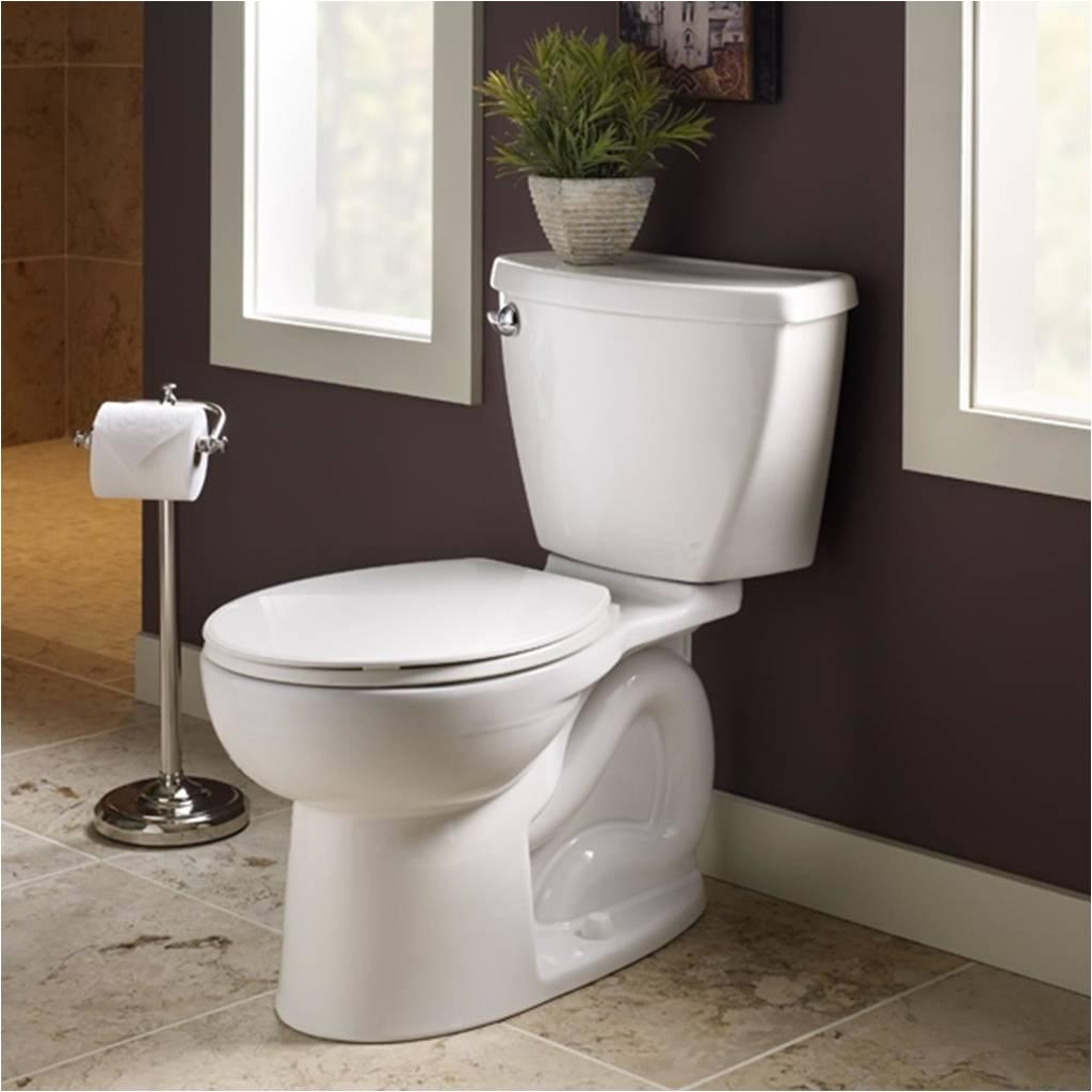 cadet 3 flowise elongated toilet 10 rough