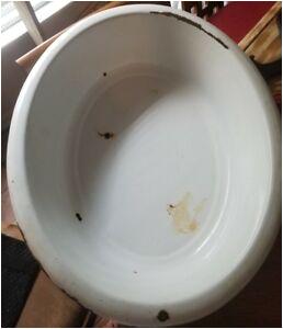 Porcelain Bathtubs for Sale Vintage Oval Porcelain Enamel Baby Bath Tub Wash