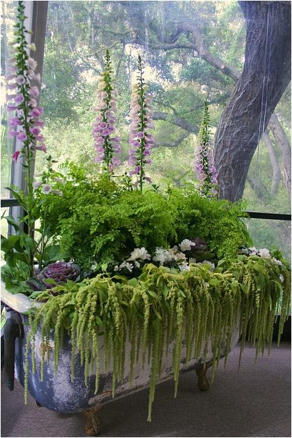 ideas vintage bath tub planter